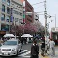 Photos: P1110987桜新町駅c?