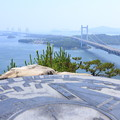Photos: 霞む連絡橋