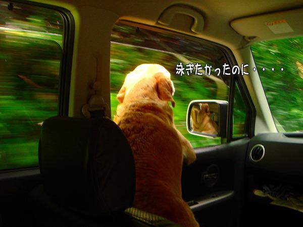 s-2008_0727myu0097