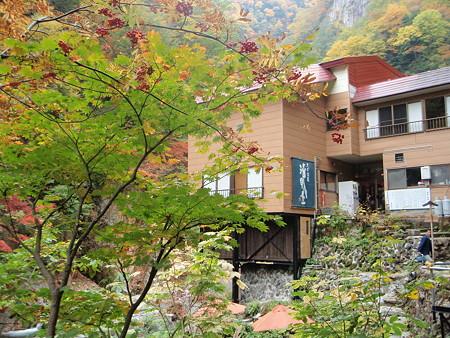 大平温泉滝見屋紅葉3