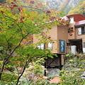 写真: 大平温泉滝見屋紅葉3