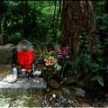 Photos: hp-山形夏の旅より さがみの地蔵様