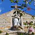 Photos: St. John the Baptist 5-12-14