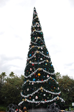 Hollywood Studio「クリスマスツリー」