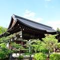 Photos: 2014_0518_151509_広隆寺