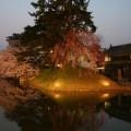 Photos: 弘前23