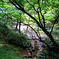 横浜児童遊園地