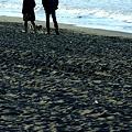 写真: 海岸物語5