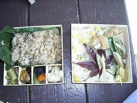 081018-小淵沢駅の駅弁 (2)