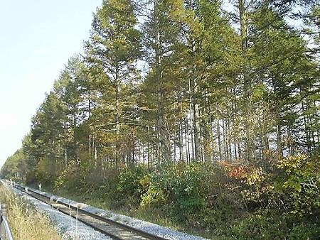 081018-JR最高地点 (11)