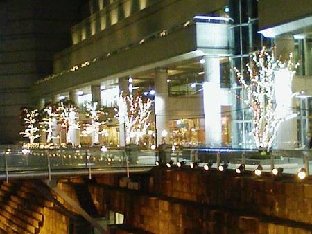 081201-クリスマスイルミネーション (21)