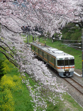 090405-普通列車 (1)