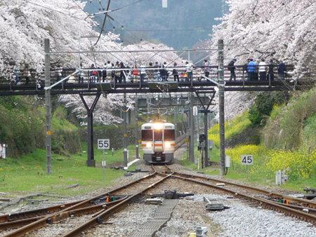 090405-山北駅ホームから (9)
