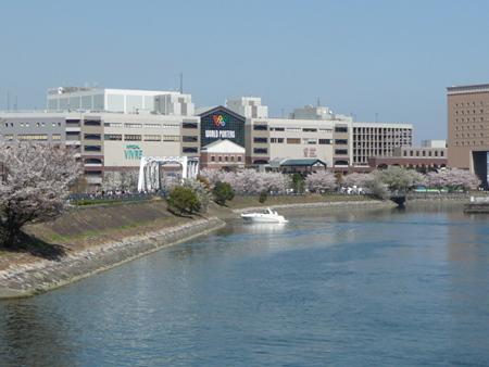 090409-MM21 汽車道と桜 (1)