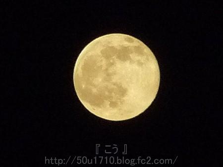 140313-お月さん (5)