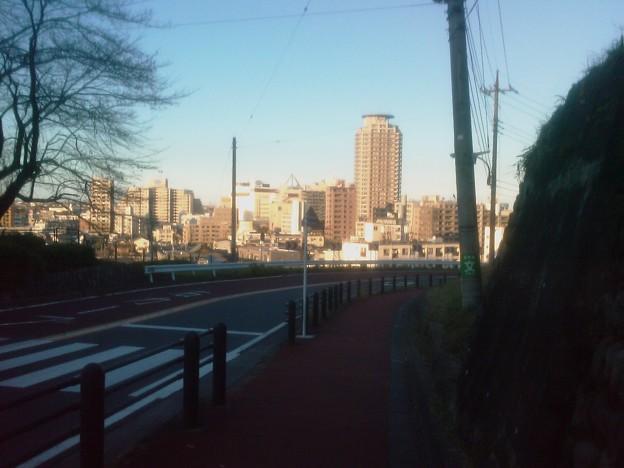 Photos: 聖蹟桜ヶ丘