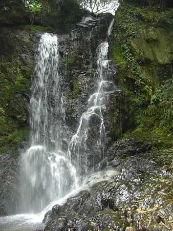 岩尾の滝多分雄滝