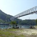 写真: 橋をくぐる船
