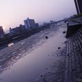 Photos: 干潟の朝