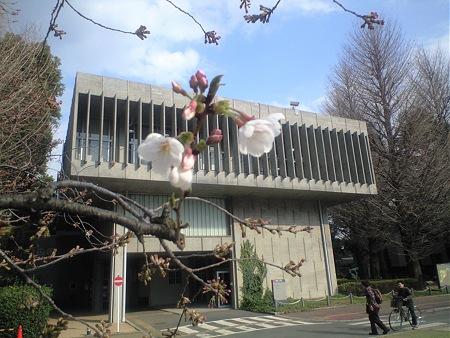 東京工業大学 事務局1号館