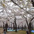 Photos: 2014-05-03