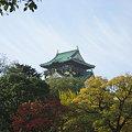 秋風の中の大阪城。。