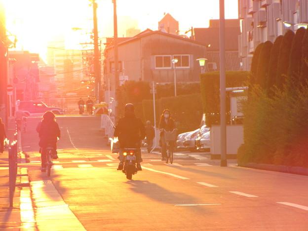 Photos: おうちへかえろぅ~♪