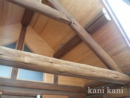 道の駅にしかたの屋根にツバメの巣♪