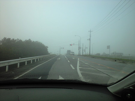 10/28朝 霧が立ちこめていました