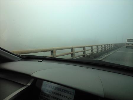 10/28朝 橋を渡っていますが川面が見えない