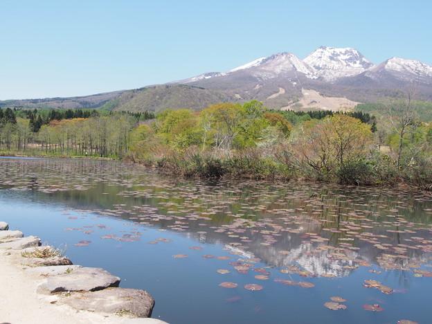 妙高高原 いもり池で