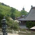 千仏塔と御堂 Pagoda beyond roofs & censer