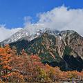 写真: 明神岳(穂高)