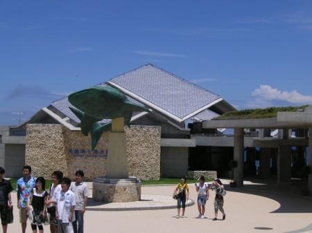 沖縄 海洋博 美ら海水族館