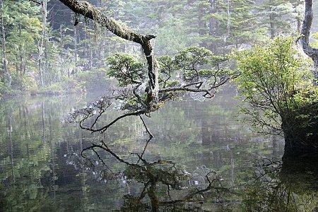2008.08.12 神降地 明神池 2