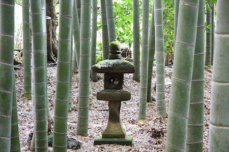 2009.03.07 報国寺 灯篭