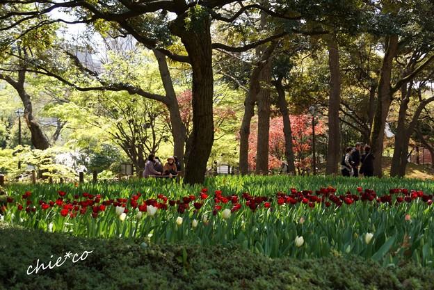 横浜公園-180