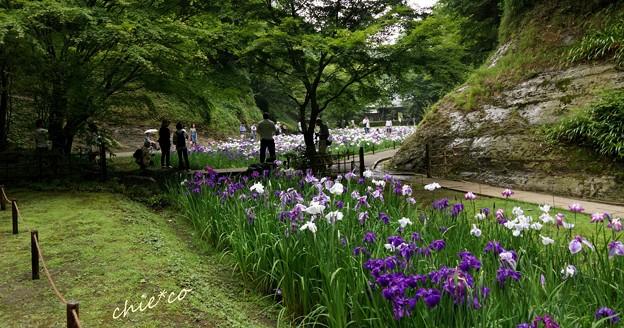 北鎌倉-164