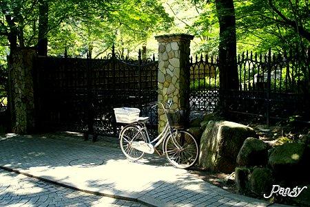 自転車のある風景・・