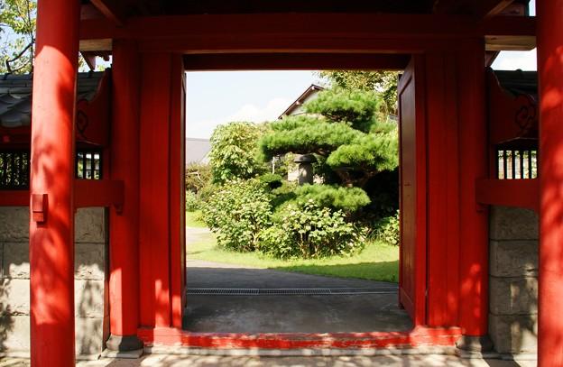 秋の日差しに・・・朱塗りの門