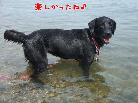 花初泳ぎ7