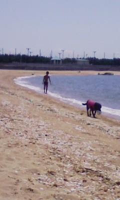 プライベートビーチだわ