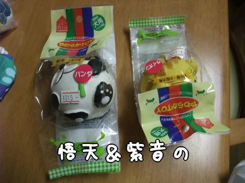 Photos: 悟天&紫音の