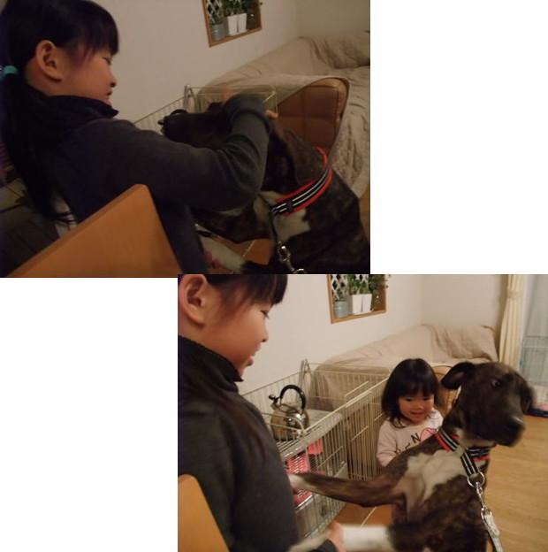 Photos: 子供大好きエマ