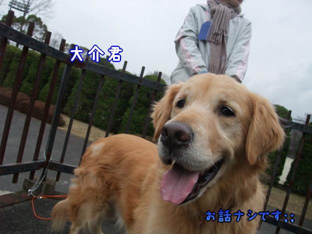 Photos: 大介