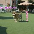 Photos: なかよし♪