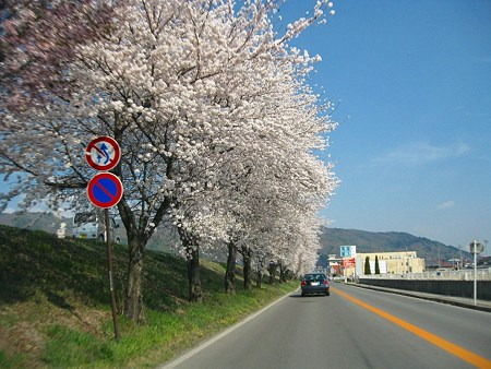2009年4月12日 高島城など (60)