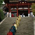 Photos: 鎌倉、秋の例大祭。(9/15)