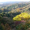 写真: 鎌倉アルプスの風景1201ta