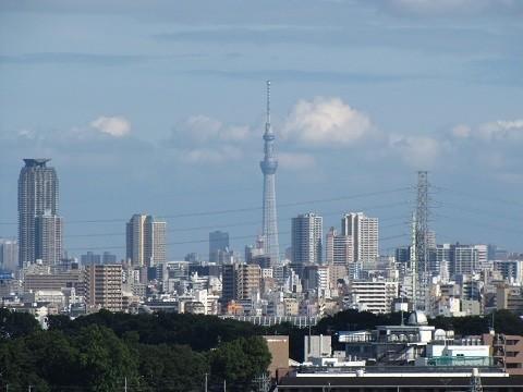 東京スカイツリー(24.6.29)